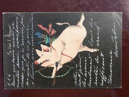1 CP Cochon Humanisé - Je Suis L'amour - Signé - Cochons