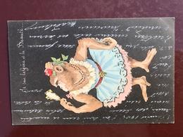 1 CP Singe Humouristique - Je Suis La Grace Et La Beauté  - Signé Je N'arrive Pas àlire La Signature - Illustrateurs & Photographes