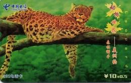 TARJETA TELEFONICA DE CHINA. Animals (4-3) Leopard. GXTNN-2005-25(4-3). (639). - Tarjetas Telefónicas