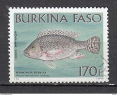 Burkina Faso, Poisson, Fish - Poissons