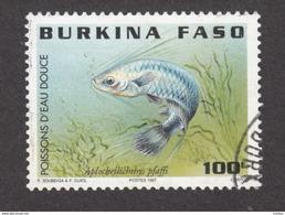 Burkina Faso, Poisson, Fish, TIMBRE AMINCI, STAMP WITH THIN - Poissons