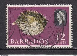 Barbade, Barbados, Poisson Ballon, Balloon Fish, élizabeth II - Poissons