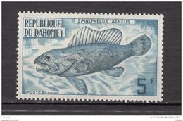 Dahomey, Poisson, Fish - Poissons