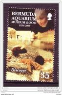 Bermudes, Bermuda, Aquarium, Musée, Zoo, Poisson, étoile De Mer, Starfish, Fish, Élizabeth II - Poissons