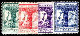 Cyrenaica 1928 Italian-African Society Unmounted Mint. - Cirenaica