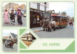 CPM - DE HAAN - De Haan
