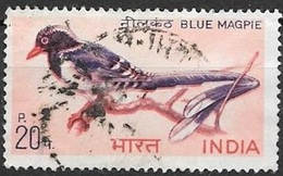 1968 Red-billed Blue Magpie, Used - India