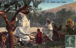 Tunisia Jardin Dans L'Oasis Garden Postcard - Tunisia