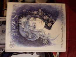 Magnifique Livre A Systeme A Pop Up  Andersen The Snow Queen A Tales In Seven Stories - Libros, Revistas, Cómics
