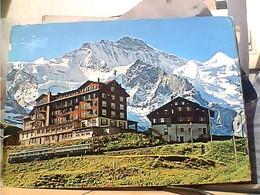 SUISSE SVIZZERA SWITZERLAND -SCHWEIZ  SCHEIDEGG  HOTELS TRENO  TRAIN  V1972 HA8019 - BE Berne