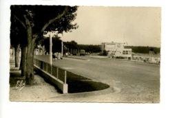 Piece Sur Le Theme De St Georges De Didonne - L Avenue De La Plage - Oblit En 1957 - Saint-Georges-de-Didonne