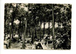 Piece Sur Le Theme De Sion Sur L Ocean Par Saint Hilaire De Riez - Le Campement En Foret - France