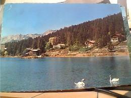 SUISSE SVIZZERA SWITZERLAND -SCHWEIZ  CRANS MONTANA  V1972 HA8022 - VS Valais
