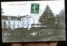 MEURSAULT LE CHATEAU - Meursault