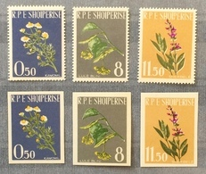 Albania 1962; Medical Plants; Perforate & Imperforate Set! MNH** High Value!! - Albanie