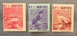 Albania 1961; Fauna, Birds; MNH** High Value!! - Albanie