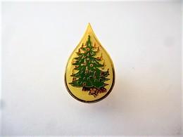 PINS SAPIN DE NOËL  / 33NAT - Christmas