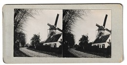 Windmolen Mill Moulin Windmuhle Foto Stereo Photo Molen - Cartes Postales
