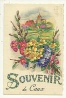 34 CAUX SOUVENIR FANTAISIE ILLUSTRATEUR HERAULT - France