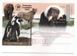 ENTIER POSTAL POLOGNE ZOO ELEPHANT GUEPARD PINGOIN CONDOR - Eléphants