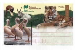 ENTIER POSTAL POLOGNE ZOO TIGRE PELICAN LOUTRE - Eléphants