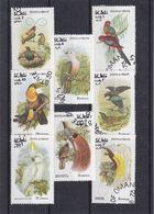 Oman - Série Oblitéré De 1973 - Oiseaux - Perroquets - Toucan - - Perroquets & Tropicaux