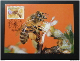 Carte Maximum Card Abeille Bee Luxembourg 1986 - Maximumkaarten