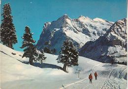 Kleine Scheidegg Ak137477 - Schweiz