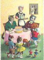 Chats Et Souris A Comportement Humain   (111657) - Dressed Animals