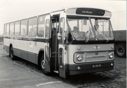Bus, Omnibus, Leyland- Den Oudsten, RTM 10, Public Transport, Real Photo - Auto's