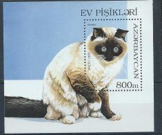 Azerbaïdjan 1995 Bloc N° 18 Neuf Avec Chats - Chats Domestiques