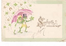 GRENOUILLES,,,,TREFLES Et FERS A CHEVAL,,,,SOUHAITS  SINCERES,,,    GAUFREE,,,,,,VOYAGE 1904,,,,BE,,,,jolie Carte - Animaux & Faune