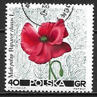 POLOGNE    -   1967.   Y&T N° 1637 Oblitéré.  Fleur  /  Coquelicot - Usados