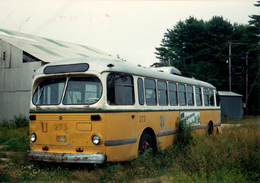 Bus, Omnibus, Another Parked Bus, Public Transport, Real Photo - Auto's