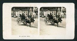 PHOTO ORIGINALE STEREO (9X18) LAGO DI GARDA MADERNO - (WEHRLI A.-G. KILCHBERG - ZURICH) - Photos Stéréoscopiques
