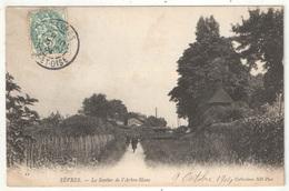 92 - SÈVRES - Le Sentier De L'Arbre-Blanc - ND 11 - 1904 - Sevres