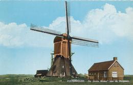 Zoeterwoude,Groote Molen, Weipoort  Windmill, Wipmolen, Real Photo - Watermolens