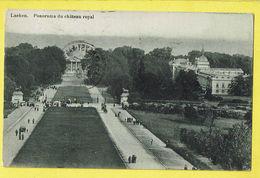 * Laken - Laeken (Brussel - Bruxelles) * (Mangelschotz) Panorama Du Chateau Royal, Zicht Op Koninklijk Kasteel, Animée - Laeken