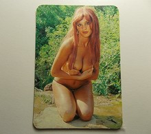 Calendar * 1977 * Spain * Erotic * Small Problems To Be Seen - Calendars