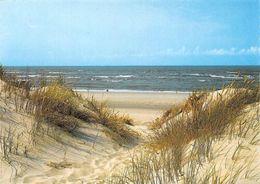 Die Schoene Insel Sylt Duenenausblick An Der Nordsee Beach - Die