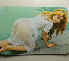Calendar * 1979 * Brazil * Erotic * Small Problems To Be Seen - Calendars