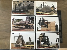 Malawi - Postfris / MNH - Complete Set Sheets Olifantentransport 2017 - Malawi (1964-...)