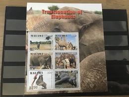 Malawi - Postfris / MNH - Sheet Olifantentransport 2017 - Malawi (1964-...)