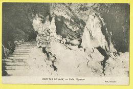 * Han Sur Lesse (Rochefort - Namur - La Wallonie) * (Nels) Grottes De Han, Salle Vigneron, Grot, Rare, Old, CPA - Rochefort