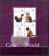 GAMBIA 2011** - Gatti / Cats  -block Di 4 Val. MNH Come Da Scansione - Gatti