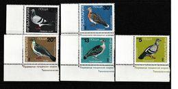 Bulgarie. Bulgaria 1984. Pigeons Et Colombes ** - Pigeons & Columbiformes