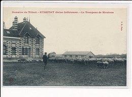 ETRETAT : Domaine Du Tilleul, Le Troupeau De Moutons - Très Bon état - Etretat