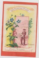 849 - CHROMO .BON POINT . LES PLANTES UTILES .BOURRACHE  . SCAN RECTO VERSO - Vieux Papiers