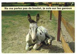 CP Humour Ane Ne Me Parlez Pas De Boulot Je Suis à Genoux - Humor