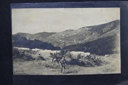 FRANCE - Carte Photo - Carcanet - Campement Du Camp De Jeunesses N° 29 AXAT - L 23351 - Guerre 1939-45